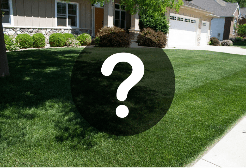 Lawn Care FAQs